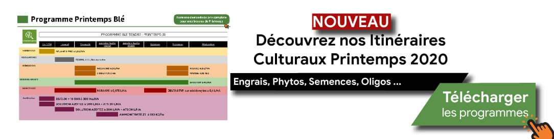 Programmes Cultures Printemps 2020-02-min